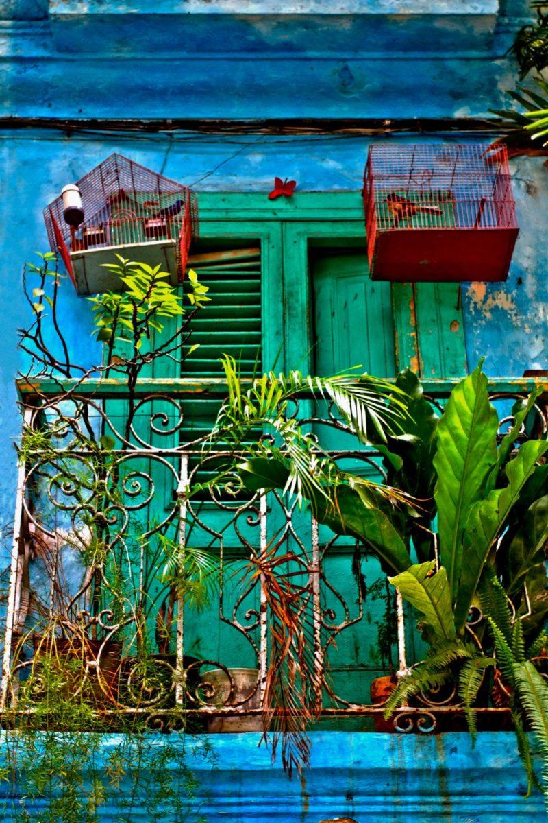 La Cucina Sud Americana • Esperienza Ristorazione